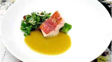 гастрономия X gastronomía X Gastronomie X Gastronomy X keahlian memasak X nấu ăn ngon X хоолны X فن حسن الأكل X גַסטרוֹנוֹמִיָה